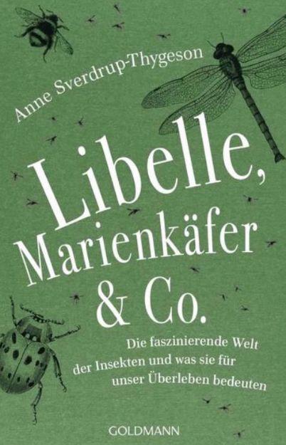 Bild von SVERDRUP-THYGESON Libelle, Marienkäfer & Co.