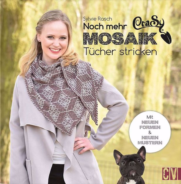 Bild von RASCH Noch mehr Crasy Mosaik Tücher stricken