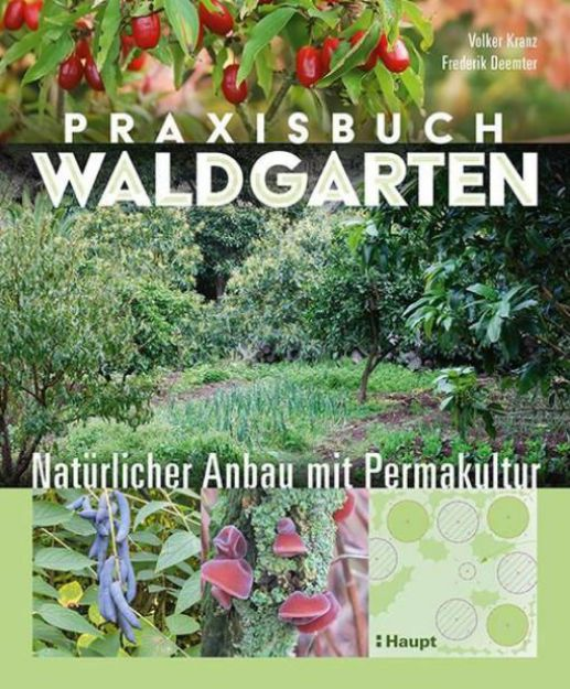 Bild von KRANZ Praxisbuch Waldgarten